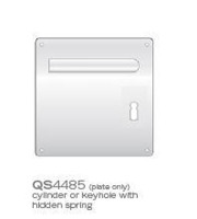 QS4485KH-german-keyhole-square-PLATE-ss